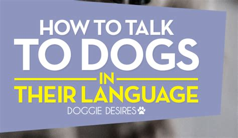 how to talk to dogs how to talk to dogs in their language doggie desires