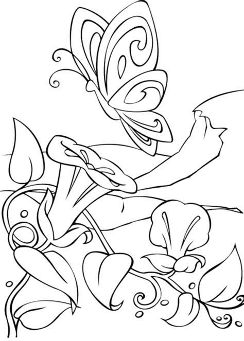imagenes de mariposas y flores para imprimir blog megadiverso flores y mariposas para pintar e imprimir
