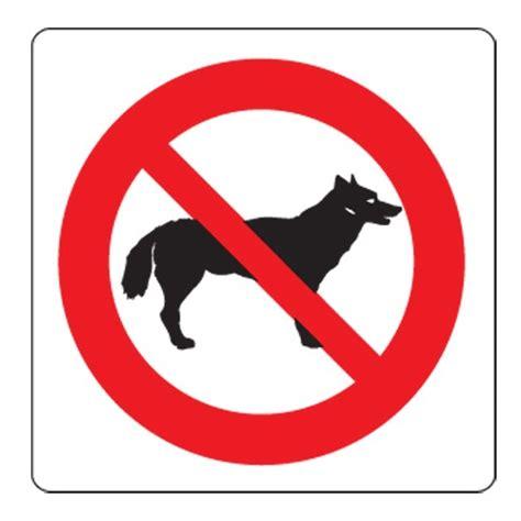 divieto d ingresso ai cani alle terme di comano troppi divieti per i cani in una