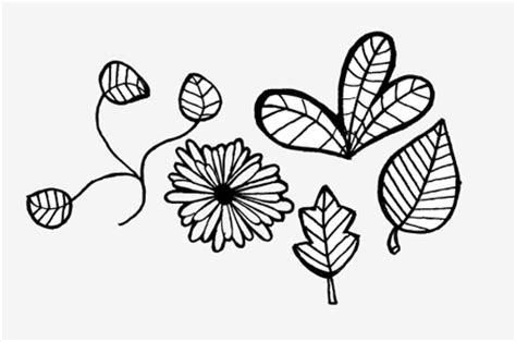 free doodle flower vector free vector graphics pack doodles and sketches