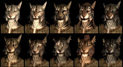 new face options all races male female guild wars 2 bethesda introduces skyrim s new faces the escapist