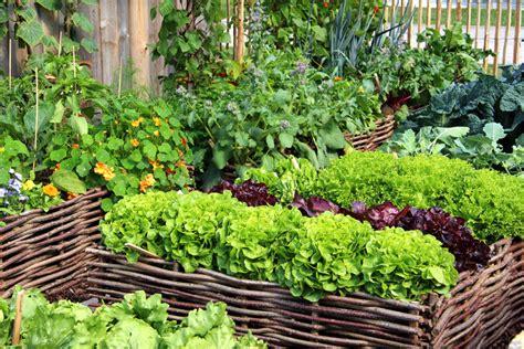 gem 252 segarten gestalten 187 daran sollten sie denken - Gemüsegarten Gestalten