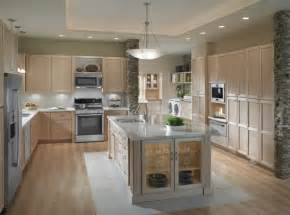 Lighting Above Kitchen Cabinets Fancy Lighting For Kitchen Cabinets Using Puck Led Lights Above Ge Profile Slide In Gas