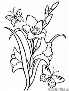 Gladiolus Flower Coloring Page sketch template