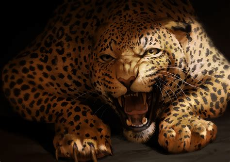 jaguars photos catamancer jaguar by tamberella on deviantart