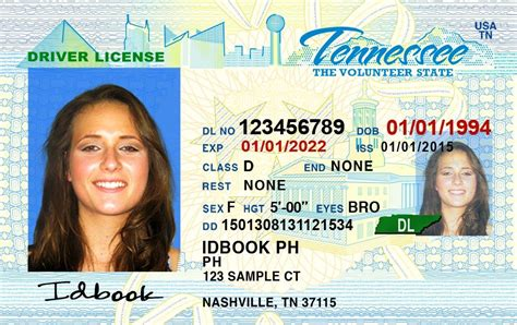 tennessee drivers license template best of license 2018 bino 9terrains florida drivers