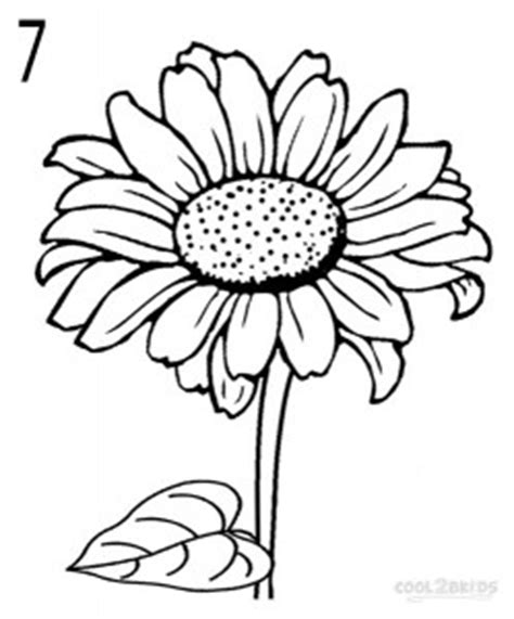 Outline Of Sunflower To Colour by How To Draw A Sunflower Step By Step Pictures Cool2bkids