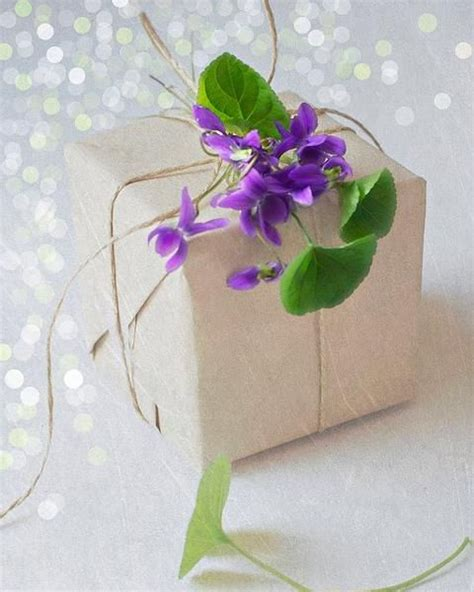 gift wrapping flowers 1000 images about on violets