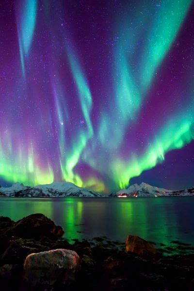 best to see northern lights in alaska best 25 alaska northern lights ideas on