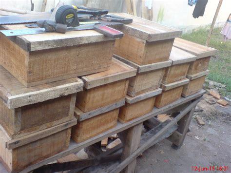 Minyak Tawon Ukuran Kecil cara membuat stup kotak klanceng trigona spp ternak