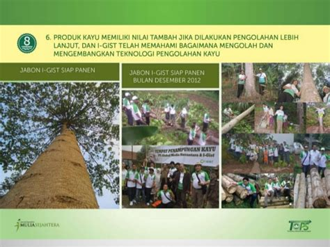 Contoh Surat Permintaa by Bibit Jabon Budidaya Green Property 082230004620 Anom