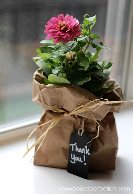 fiori per comunione addobbi con fiori per prima comunione feste e cerimonie