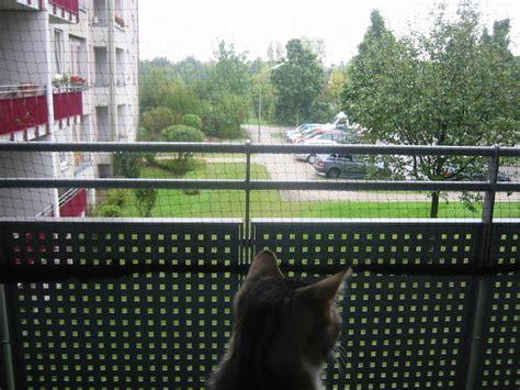 hängematte balkon befestigen katzennetz installation f 252 r dummies ohne bohren ohne