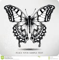 butterfly hand drawing vector royalty free stock image