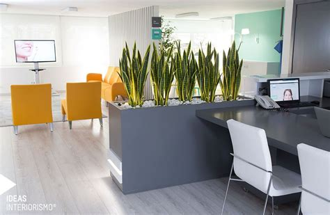 decoracion clinica dental cl 237 nica dental decoraci 243 n de interiores en valencia