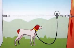 Zip Lines For Backyards Pet Supplies The Pet Product Guru Part 48