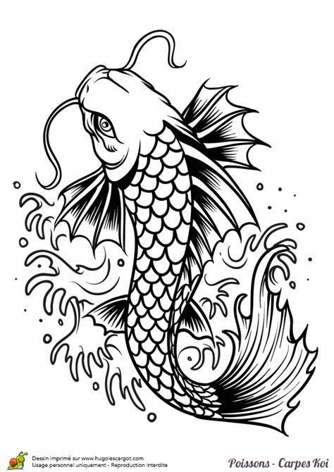 tattoo designs torrent coloriage poisson carpe koi torrent sur hugolescargot
