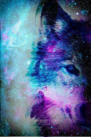 wallpaper galaxy wolf my friend kelsey loves wolfs and her birthday was based on