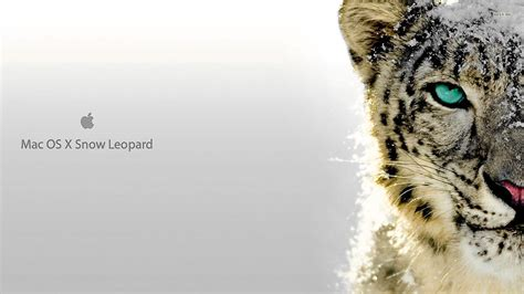wallpaper mac leopard hd mac snow leopard wallpapers wallpaper cave