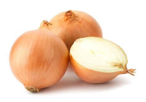 on ion the difference between white and yellow onions tiphero