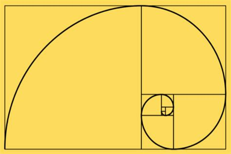 fibonacci golden section project 13 the golden section realgraphics s blog