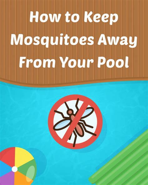how to keep mosquitoes away from backyard 118 best pool maintenance images on pinterest pools