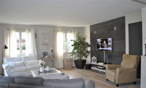 Choix Couleur Peinture Salon Salle Manger by Beautiful Idee De Decoration Salon Salle A Manger Moderne