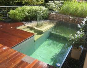 Pond Deck Designs 17 Backyard Beaches Swimming Pools More Webecoist