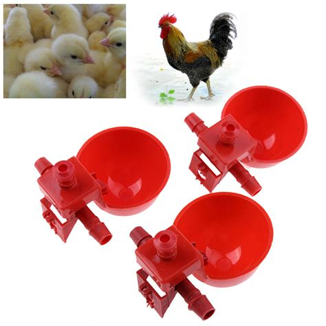 Alat Peternakan 5pcs Set Poultry Chicken Hen Automat buy wholesale chicken feed for sale from china chicken feed for sale wholesalers