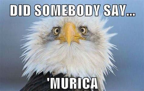 4 Of July Memes - happy 4th july the ebay community