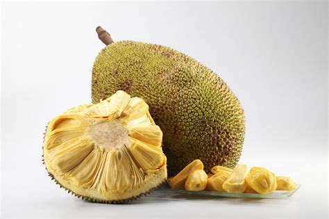 protein jackfruit fruits of asia india cambodia china and more