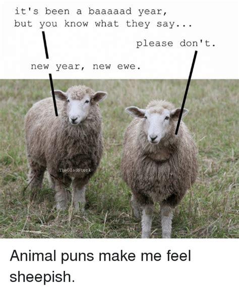 Animal Memes 2017