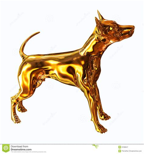 puppy gold gold royalty free stock photography image 9168647