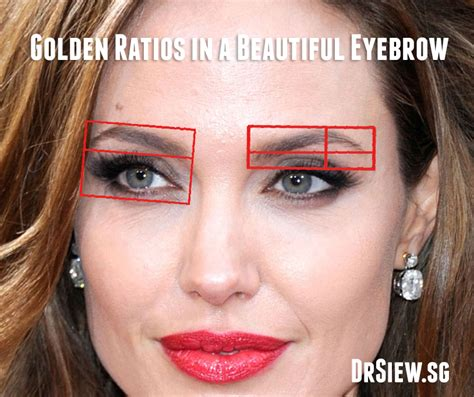 the aesthetics of the eyebrows feminine beauty the feminisation of bruce jenner s face features of a