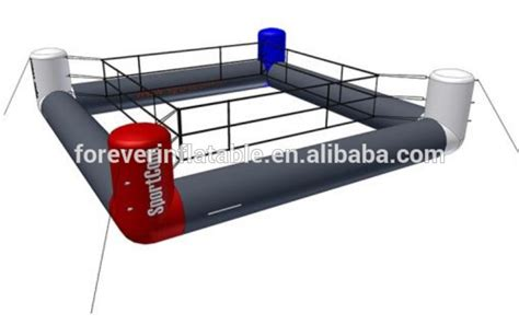 cheap boxing ring for and adults