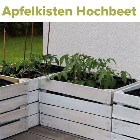 Alte Obstkisten Kostenlos by Obstkisten Aus Holz Kostenlos Bvrao