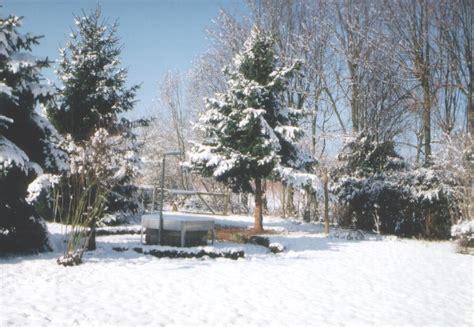 garten winter garten im winter