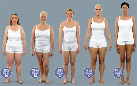 average size woman the incredible shrinking plus size models you re doing it