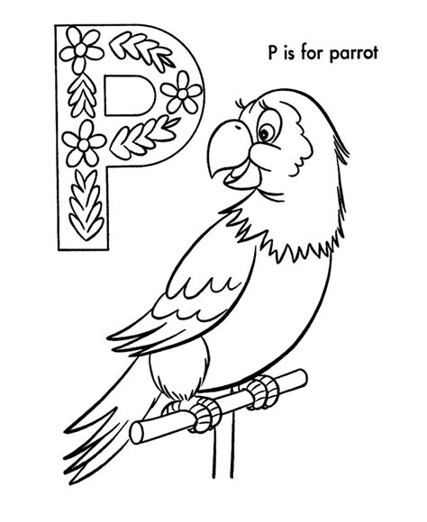 coloring page parrot parrot coloring sheet printable coloring pages