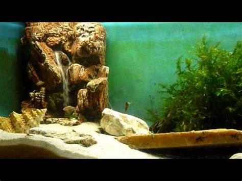 sandfall im aquarium youtube