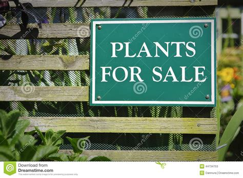 garden sale plants for sale sign stock photo image 44734753