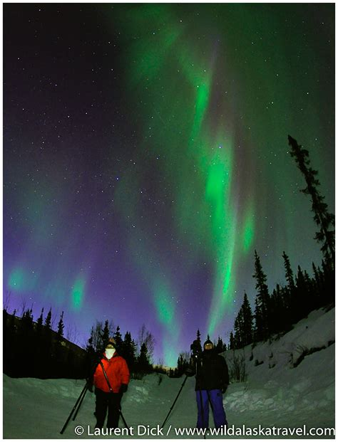 when to go to alaska for northern lights wild alaska travel alaska northern lights tour archives