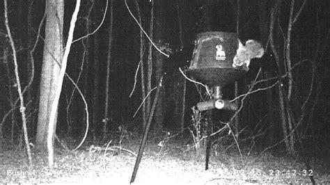 Raccoon Proof Your Deer Feeder raccoon proof buck feeder