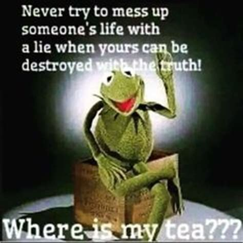 Eat A Dick Meme - 1000 images about kermit on pinterest kermit the frog kermit the frog meme and business meme