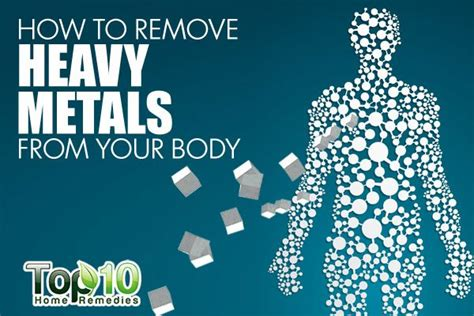 Pregnancy And Heavy Metal Detox by How To Remove Heavy Metals From Your Top 10 Home
