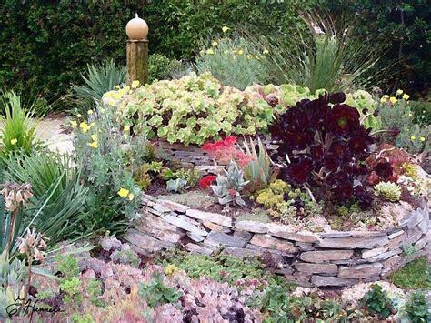 giardino con piante grasse giardini con piante grasse foto nanopress donna