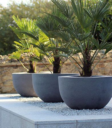 Planters Modern by 50 Modern Front Yard Designs And Ideas Renoguide