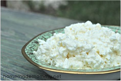 cottage cheese homemade cottage cheese recipe dishmaps