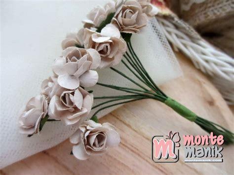 gambar  tanaman hias bunga digunakan mempercantik mawar