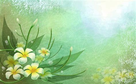 Orchidee Gelbe Blätter 5399 wei 223 gelb bl 228 tter blumen hintergrundbilder wei 223